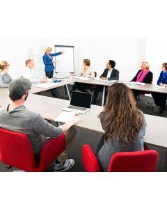 Effectief Vergaderen (online cursus en online coaching)