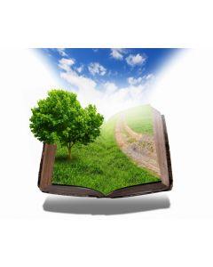 Natuurgeneeskunde - Geschiedenis online cursus
