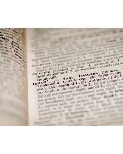 Nederlands Foutloos Schrijven online cursus