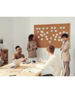 Agile Scrum Product Owner training