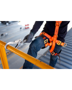 Safety Harness - CLS Training